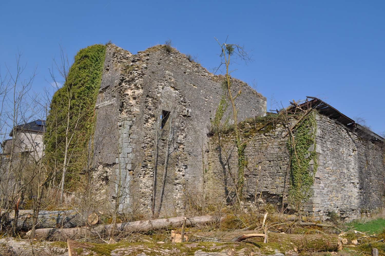 Vue générale de la tour d'habitation du XIIe siècle